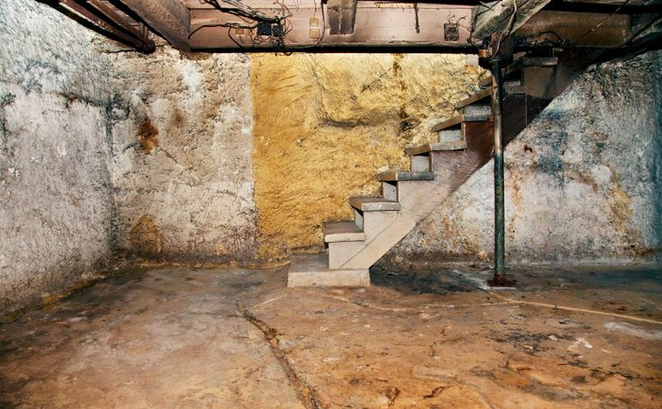 Musty Smell, How To Rid Basement Smell