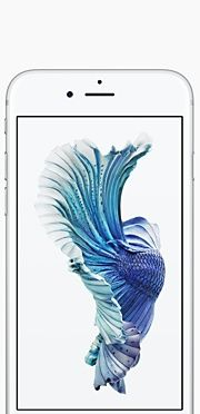 Buy iPhone 6s and iPhone 6s Plus - Apple (NZ)