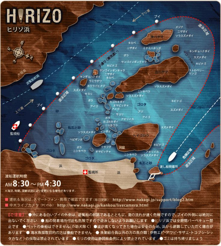 踊り子号とバス、そして船に揺られて東京から3時間半。そこには、日本とは思えない透明度抜群の海岸があります。サンゴ礁を見ながら、たくさんの美しい魚たちと遊べちゃうなんて、まるでアリエルみたい!!みなさんも伊豆の秘境で、人魚姫気分を味わってみませんか?