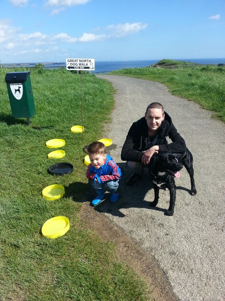 Ripley the Springador along with Thomas and Craig make a quick pit stop during the Great North Dog Walk, South Shields South Tyneside.