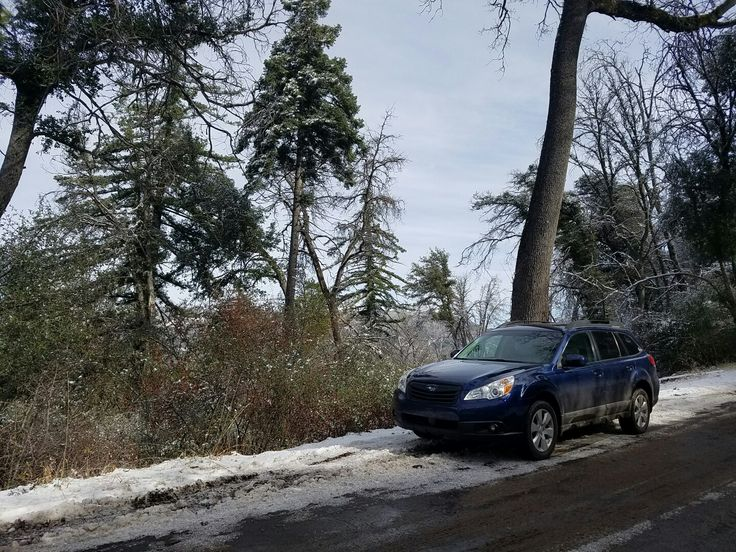 Palomar Mountain in our 2011 Subaru outback wagon