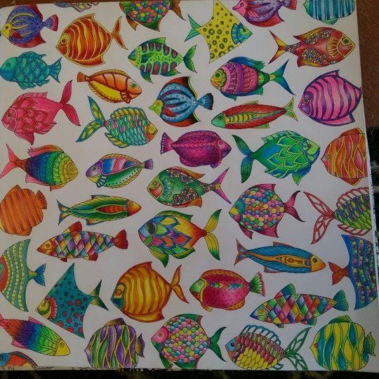 Lost Ocean Coloring Book Fish
