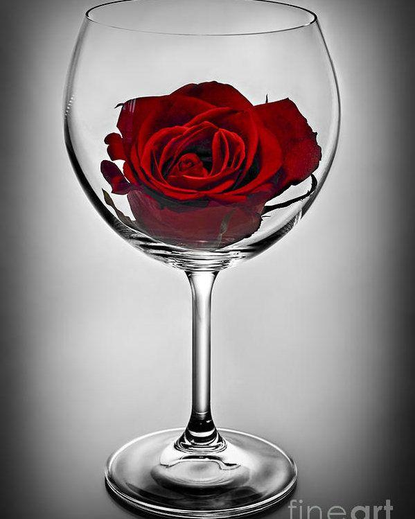 красивые картинки бокал с розой рецепт фото