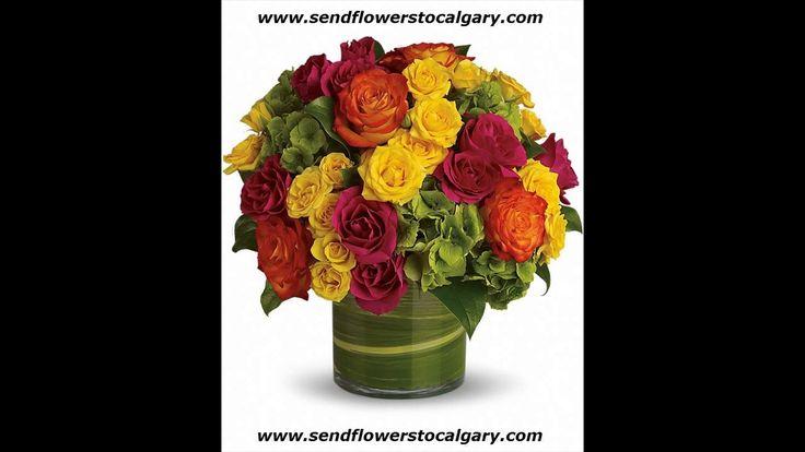 Envoyer des fleurs de Varennes Québec à Calgary en Alberta https://calgaryflowersdelivery.com | http://sendflowerstocalgary.com #EnvoyerDesFleursÀCalgary #SendFlowersToCalgary #FlowersInCalgary #calgary_flowers