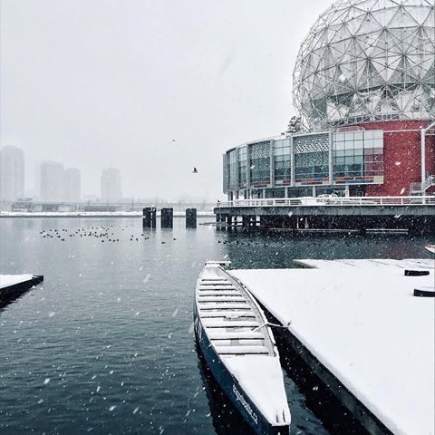 Another snowy surprise.   Thanks @rhederek for our Daily Photo #2444! #vancouverisawesome