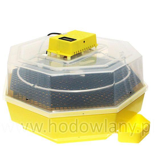 Inkubator iBator HOME 60 z wyświetlaczem temp. i wilgotności - zdjecie 1