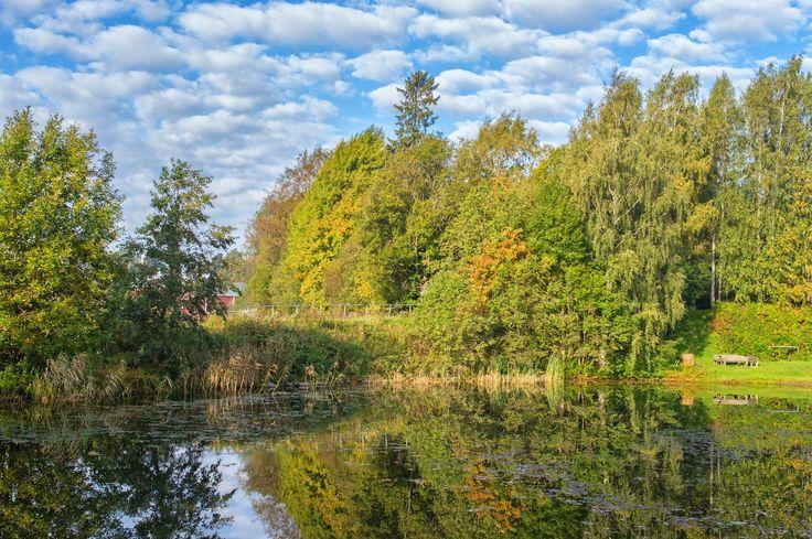 Life in Finland: VIIKKI. PART 1