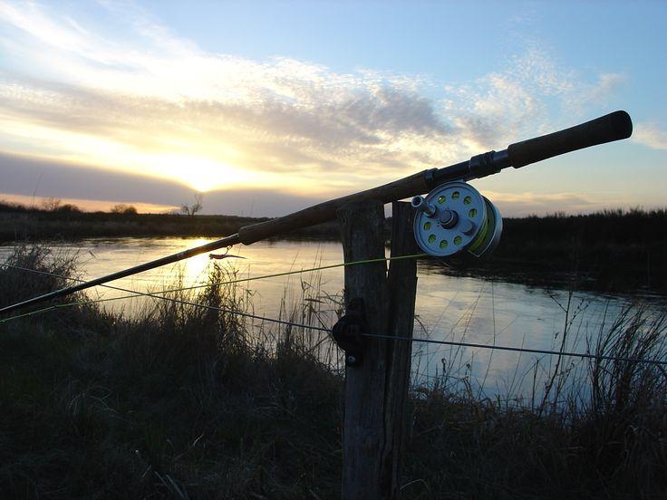 Denmark - river Skjern - salmon fishing