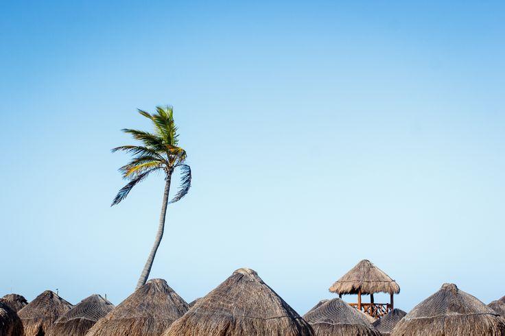 - Playa Paraíso - Riviera Maya, Mexico.