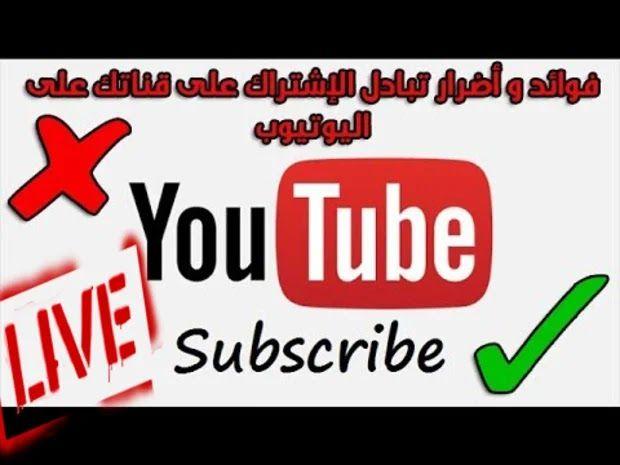 معلومات مهمة مخاطر تبادل الاشتراكات وشراء متابعين في قناة اليوتيوب Blog Posts Youtube Blog