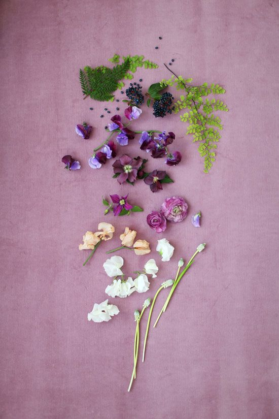 color palette | wild flower love | via: designlovefest
