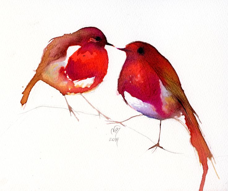 Two Little Ink Birds Illustration hand drawn on Saunders Waterford classic watercolour paper  © Nancy Moniz Charalambous