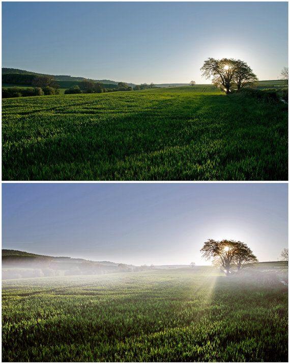 Fog Photoshop Overlays: Mist and Haze Photo Layer by ElyseBear