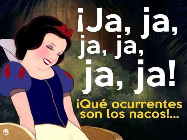 Frase De Memes: 61 Best Images About Memes De Disney On Pinterest