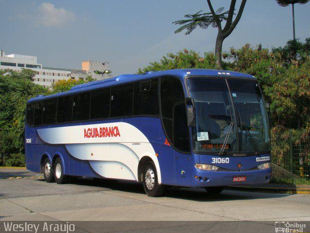 Ônibus da empresa Viação Águia Branca, carro 31060, carroceria Marcopolo Paradiso G6 1200 HD, chassi Scania K124. Foto na cidade de São Paulo-SP por Wesley Araujo, publicada em 22/04/2016 02:15:33.