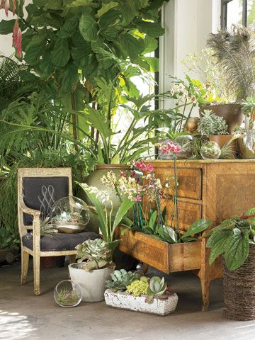 Love the way the items are displayed.  This image is just a section of a shop in Atlanta called GARDEN owned by landscape designer Matthew Klyn.  Can't wait to visit on my next trip.  Article in Garden and Gun Magazine.  Photo credit:  Emily Followill.