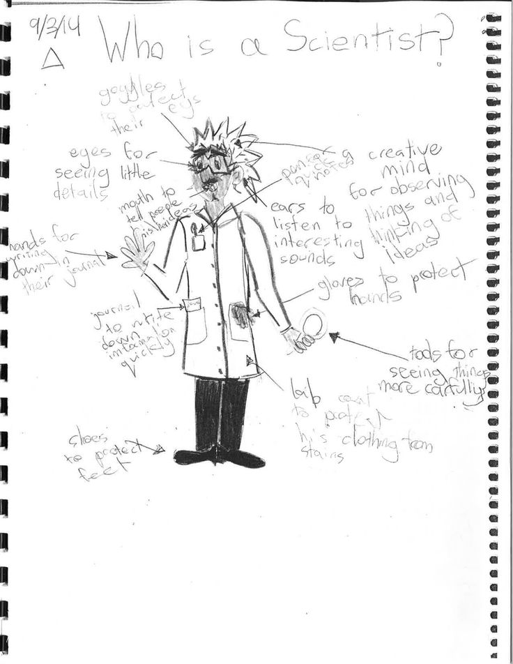 28 best Education: Science Notebooks images on Pinterest