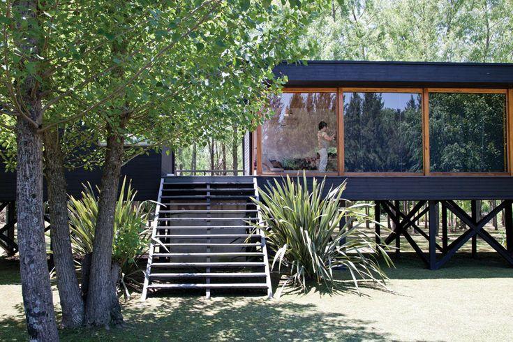 В дом на столбах ведет широкая деревянная лестница.  (современный дом,пляжный дом,архитектура,дизайн,экстерьер,интерьер,дизайн интерьера,мебель,на открытом воздухе,патио,балкон,терраса,вход,прихожая,фасад,лестница) .