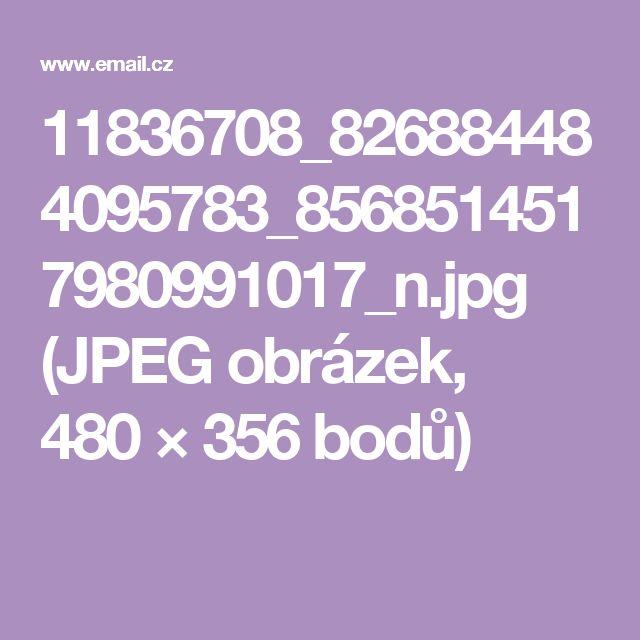 11836708_826884484095783_8568514517980991017_n.jpg (JPEG obrázek, 480×356 bodů)
