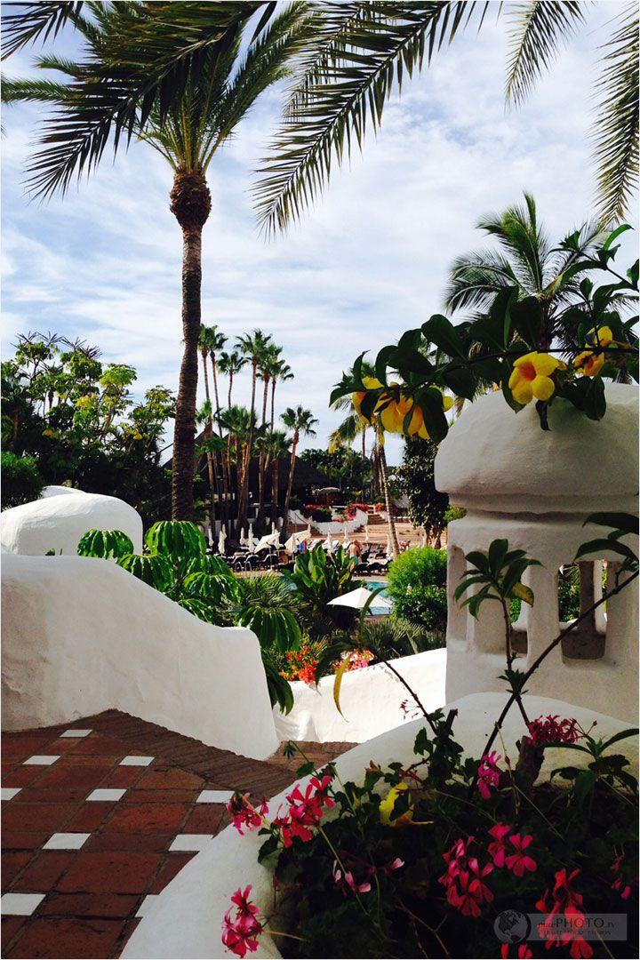 Teneriffa der erste eindruck puravida jardin tropical for Hotel jardin tropical tenerife