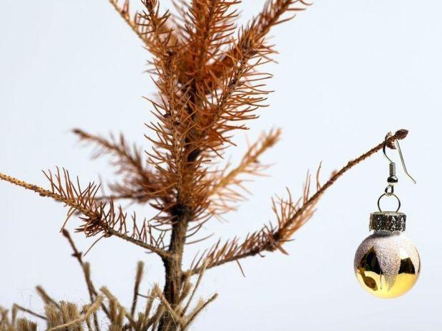 Почему в Англии осыпаются рождественские елки?  Виновата погода. http://apral.ru/2017/04/26/pochemu-v-anglii-osypayutsya-rozhdestvenskie-elki-vinovata-pogoda/  В Великобритании ежегодно на Рождество покупают около шести миллионов елок, средняя цена одной – 48 фунтов. Обычно елки благополучно стоят [...]