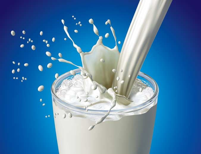 Dairy Education: COMPOSITION OF MILK