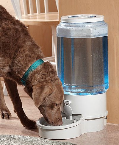 Autopetwaterer - Automatic Filtered Pet Waterer (Large)