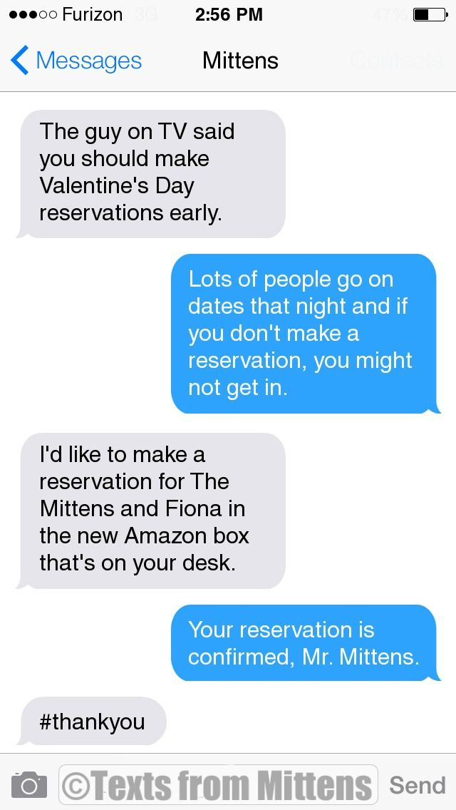 NEW Daily Mittens: The Reservations Edition More Mittens: http://textsfrommittens.com/ Order Mittens' book: http://amzn.to/1BVvMmB