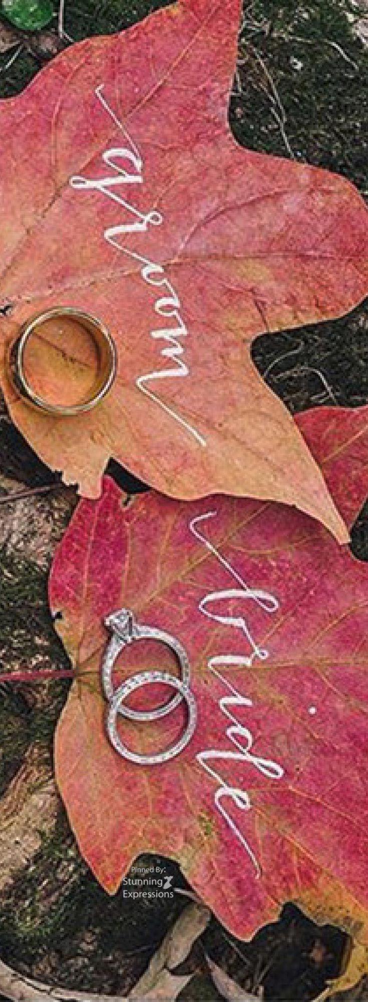 92 best AUTUMN - FALL ♕ Season images on Pinterest   Autumn leaf ...
