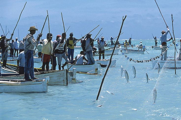 Où acheter la foreuse pour la pêche