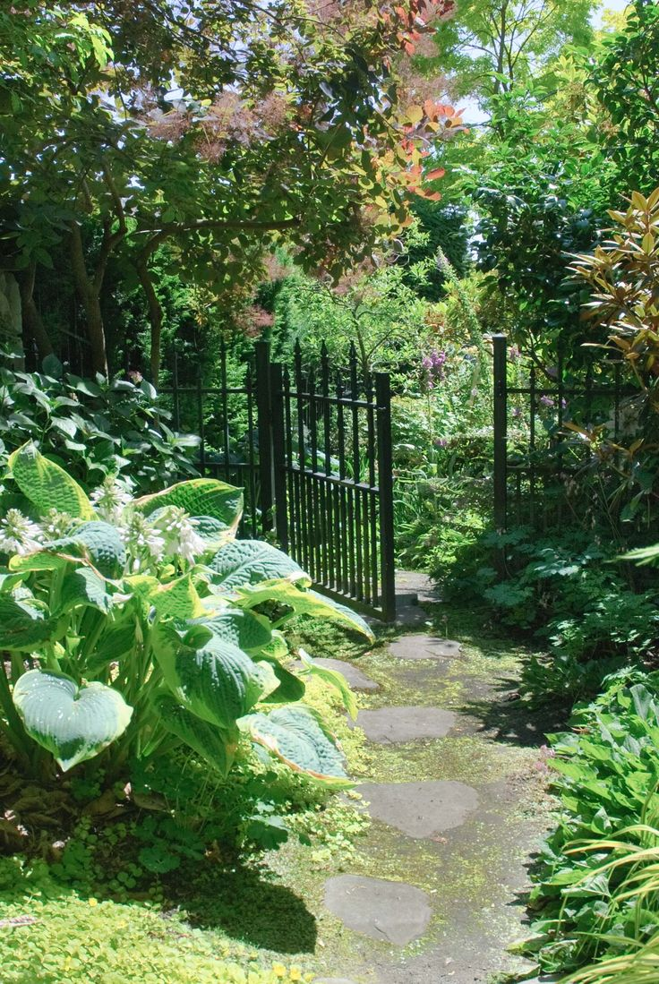 Walsh and Co. Gardens: Gallery