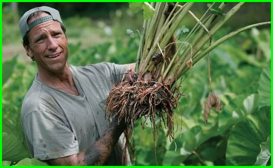 Mike Rowe of Dirty Jobs wants to talk about...