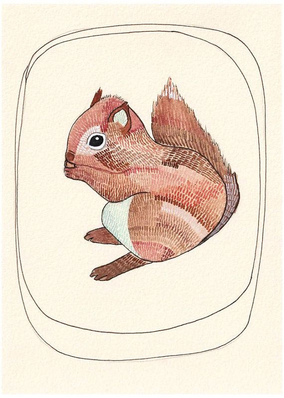 LOVE THIS!  So i bought it for V :-) Squirrel Illustration Watercolor Art Print 8x10  by michelemaule, $18.00