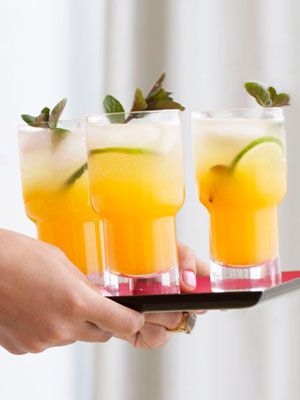 Passion Fruit Margs                                                  2 parts Passion Fruit Mojito mix 1 part white rum Ice Club soda Mint sprigs Lime slices