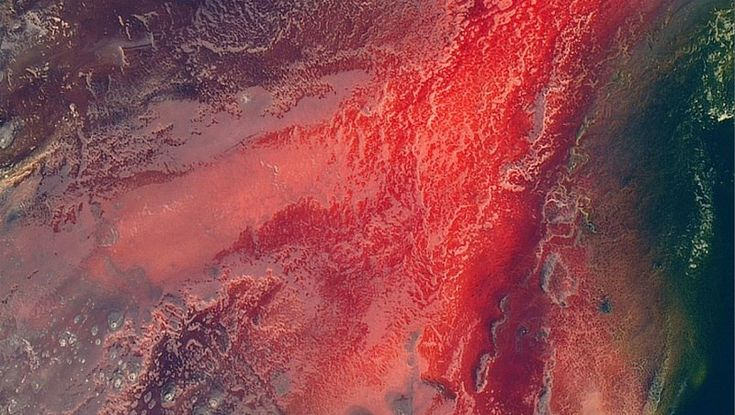 Lake natron tanzania soest reservoir earth