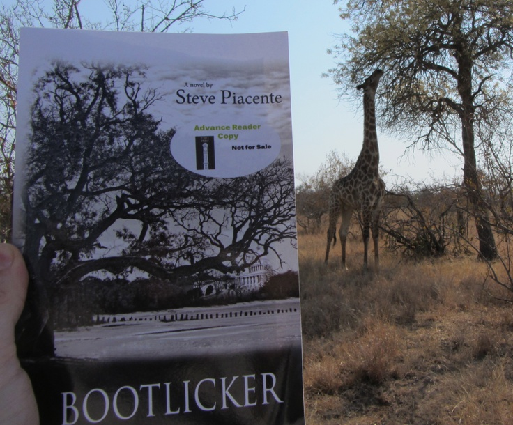 Bootlicker on safari in South Africa at Kruger National Park. Thanks, Monet and Dan Gregory!