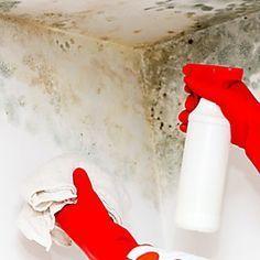 Come eliminare l'umidità in modo naturale