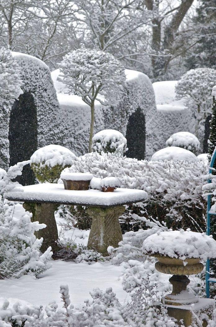 Winter *❄️~*.Wishes & Dreams.*~❄️* Garden of Dreams . . .