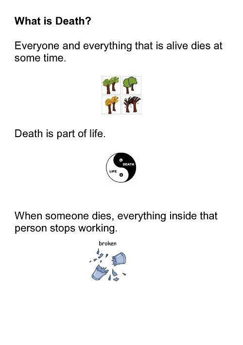 What is Death?     A social story