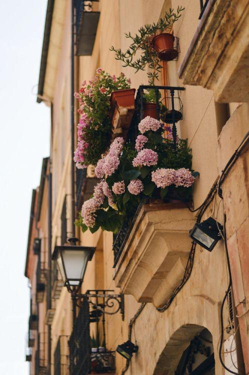 #Salamanca #flowers #balcony