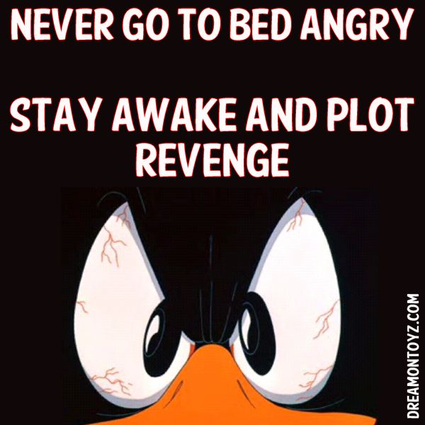 NEVER GO TO BED ANGRY STAY AWAKE AND PLOT REVENGE MORE Cartoon & TV images http://cartoongraphics.blogspot.com/ ~And on Facebook~ https://www.facebook.com/dreamontoyz Angry Daffy Duck #Greeting #Quote #Saying