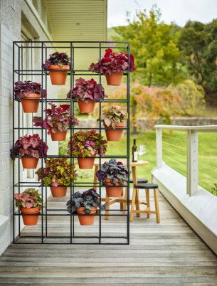 Planting is a form self-expression | Vertical Garden.