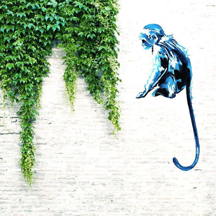 Art anywhere. Art everywhere. #monkeylove #monkey #graffiti #graffitiart #digitalgraffiti #creative #creatives #creativeart #creativeminds #creativepreneur #creativebug #creativebiz #creativeprocess #creativedirector #creativelife #creativeideas #creativespace #paint #painter #painting #paintingoftheday #painteditmyself #paintlife #paintingart #watercolor #watercolourart #watercolorillustration #watercolorpaintings