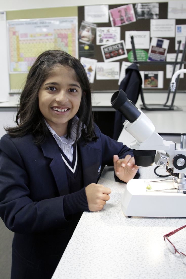 Year 5 students learning about plant structure, using a binocular microscope.