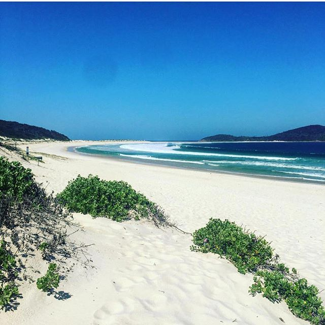 Fingal Bay, Australia Beautiful day for it! You can say that again! Great weekend in Port Stephens! Thanks to @caitlin.mulvey for this great shot! Thank you for tagging #PortStephens ❤️ #PSiloveyou