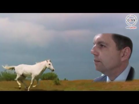 Biele kone na Slovensku - unikli štátne dokumenty!