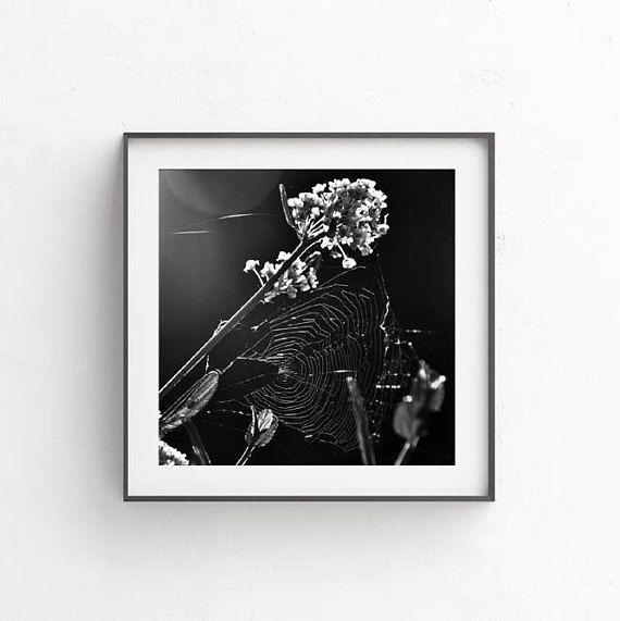 Office decor Black and white photography Fine art decor