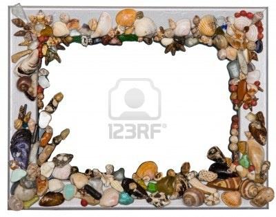 Shell cornice su sfondo bianco  Archivio Fotografico