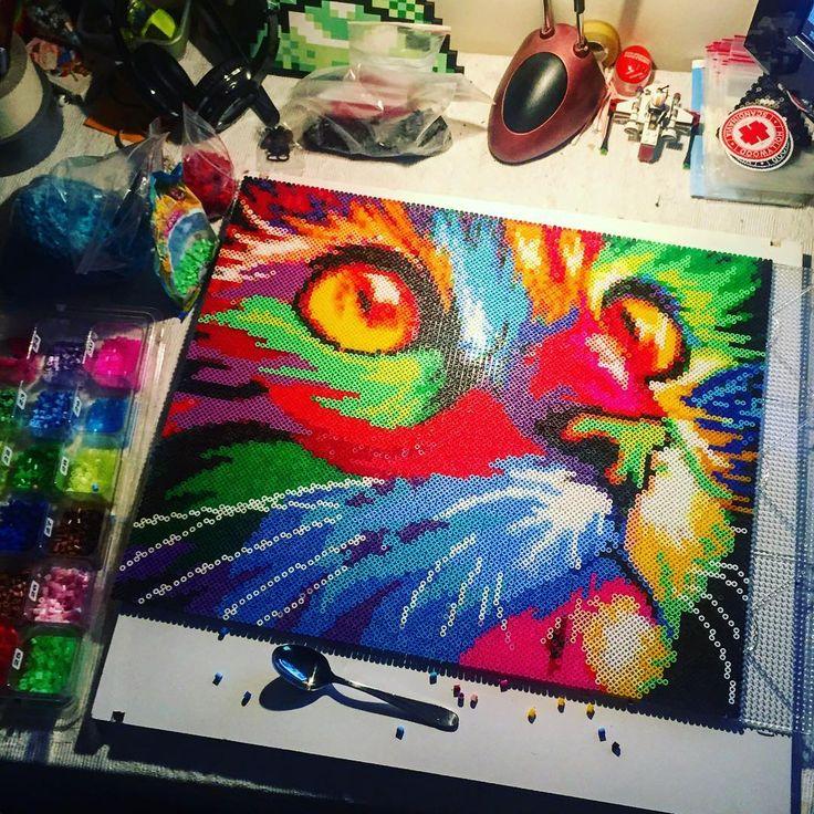 Colorful cat nabbi/hama perler bead art by dropthebead