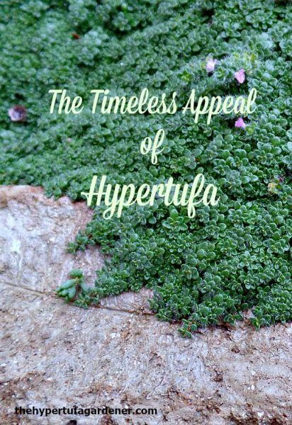 The Timeless Appeal of Hypertufa via @hypertufagarden || These days we have vermiculite and perlite as our aggregate for hypertufa, so our product is lighter than the older hypertufa. If you haven't tried it, make just one trough for yourself and you will love it...